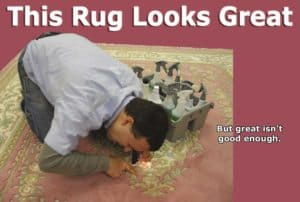 Rug Cleaning Great Falls VA